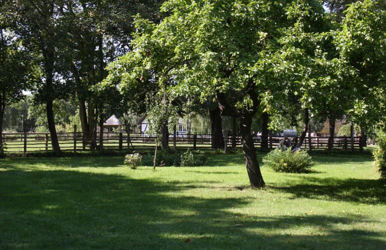 Aktivurlaub mit Hund Ostsee Ribnitz-Damgarten