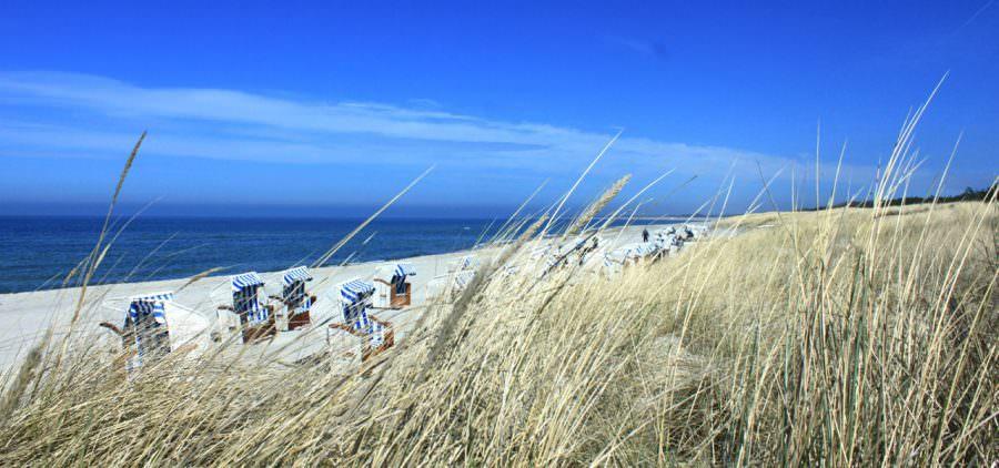 Ostsee Strand Dierhagen