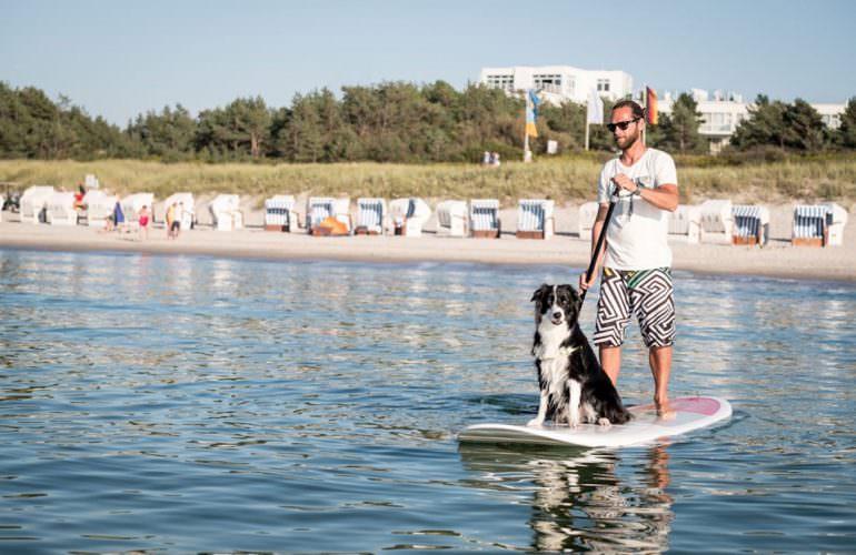 Urlaub mit Hund Ostsee Dierhagen